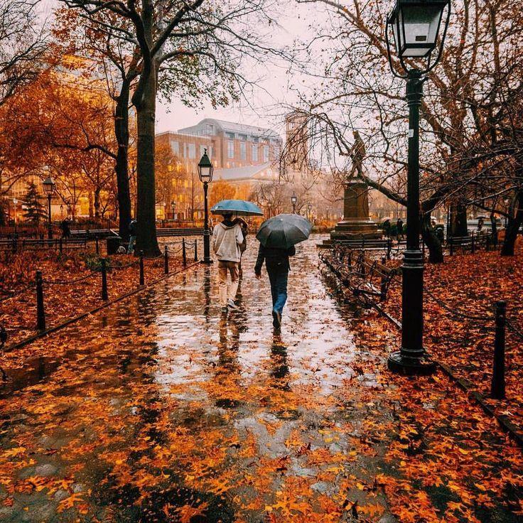 9562954894ef8556741268483f59de02--autumn-rain-nyc-rain